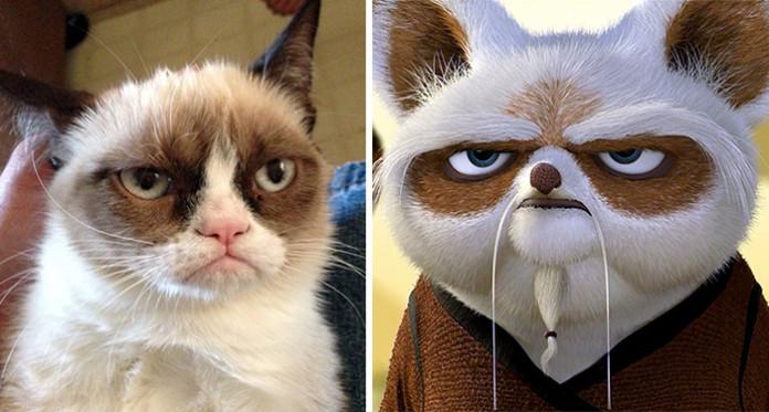 Grumpy-Cat-és-Shi-Fu-696x373